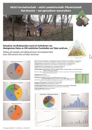 Trüffel-Poster - 100 Trüffelstellen im Visier - Ergebnisse einer Studie