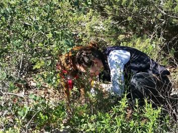 Trüffelsuche mit Hund an der Algarve
