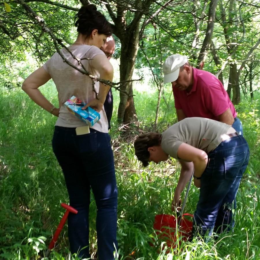 Trüffel Mykorrhiza Berater