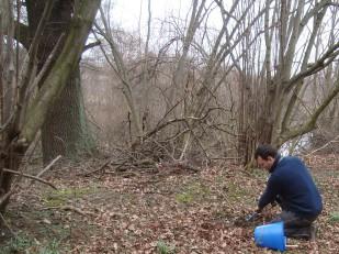 Bodenprobe an natürlicher Stelle