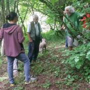 Besprechung auf einer Trüffelplantage