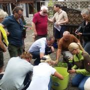 praktische Übung zur Trüffelbaumherstellung