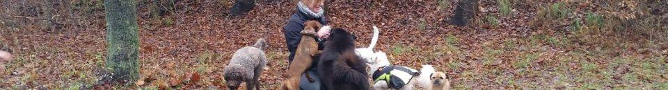 Trüffelsucherin, Trüffelhunde-Ausbilderin, gepr. Trüffelberaterin: Sabine aus Köln