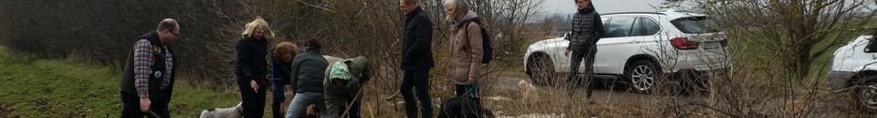 Trüffelgarten - Bodenprobe und Bodenanalyse